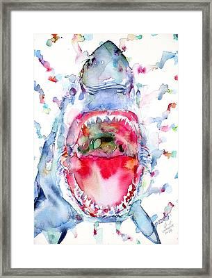Watercolor Shark Framed Print by Fabrizio Cassetta