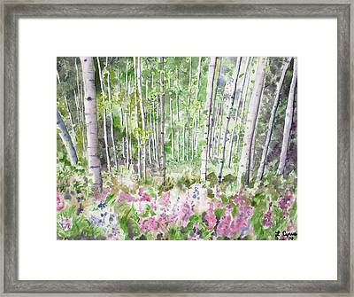 Framed Print featuring the painting Watercolor - Summer Aspen Glade by Cascade Colors