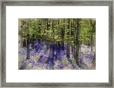 Watercolour Painting Of Eautiful Morning In Spring Bluebell For Framed Print by Matthew Gibson