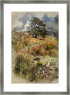 Watercolour Painting Of Evening Landscape Image Of Llyn Y Dywarc Framed Print