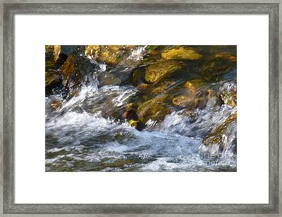 Framed Print featuring the photograph Watercourse by Jean Bernard Roussilhe