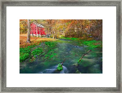 Watercress At Alley Spring  Framed Print by Jackie Novak
