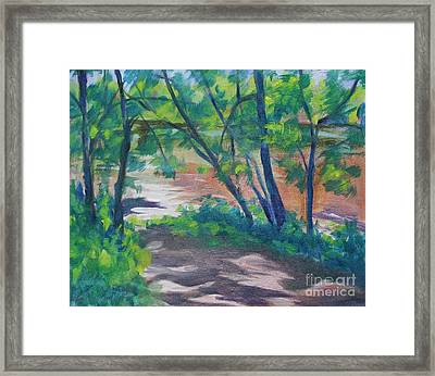 Watercress Beach On The Current River   Framed Print