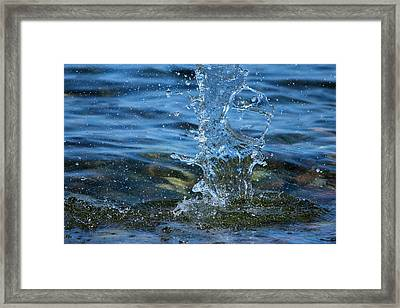 Waterdrops Framed Print by Heike Hultsch