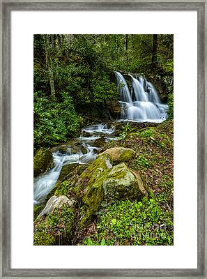 Waterfall Along Back Fork Of Elk River Framed Print by Thomas R Fletcher
