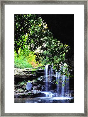 Waterfall And Rhododendron Framed Print by Thomas R Fletcher