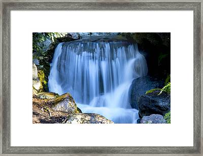 Waterfall At Dow Gardens, Midland Michigan Framed Print