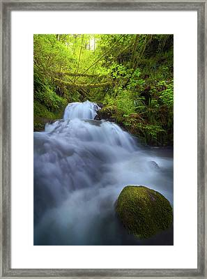 Waterfall At Shepperds Dell Falls Framed Print by David Gn