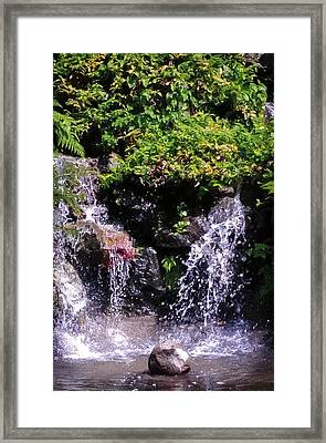 Waterfall At Wapato Park, Tacoma, Wa Framed Print