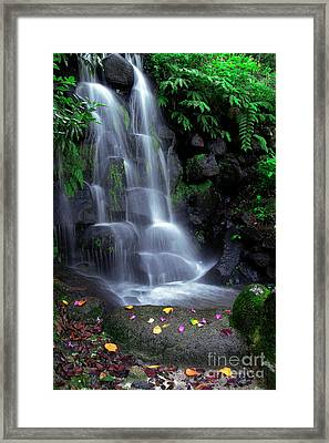 Waterfall Framed Print by Carlos Caetano