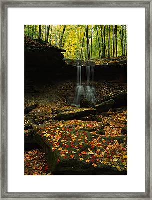 Waterfall In A Forest, Blue Hen Falls Framed Print by Panoramic Images