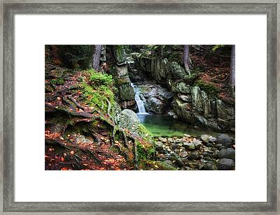 Waterfall In Enchanted Forest Framed Print by Artur Bogacki