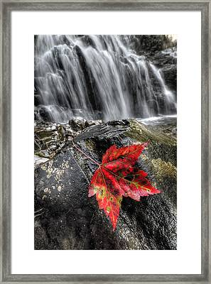 Waterfall In Fall Framed Print