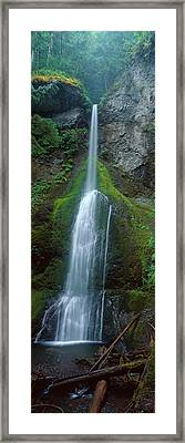 Waterfall In Olympic National Rainforest Framed Print