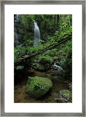 Waterfall Inside The Rainforest Costa Rica Framed Print