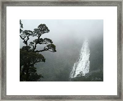 Waterfall Framed Print by Joe Bonita