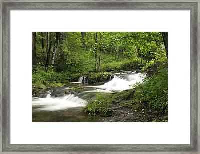 Waterfall Oasis Framed Print by Tina B Hamilton