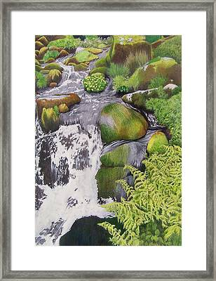 Waterfall On Skye Framed Print by Constance Drescher