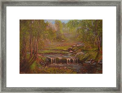 Waterfall Paridise Framed Print