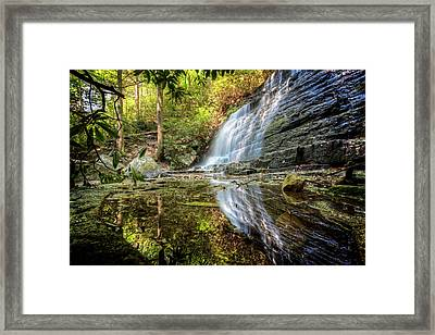 Waterfall Reflections Framed Print