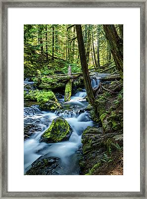 Waterfall Woods Framed Print
