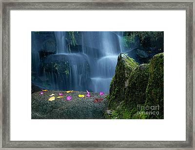 Waterfall02 Framed Print by Carlos Caetano