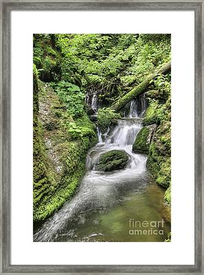 Framed Print featuring the photograph Waterfalls And Rapids On The White Opava Stream by Michal Boubin