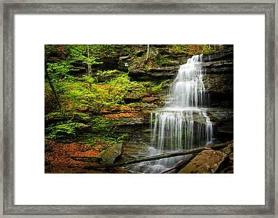 Waterfalls On Little Three Mile Run Framed Print