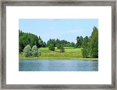 Waterfront Meadow Framed Print