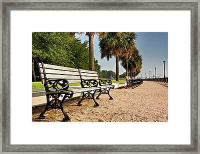 Waterfront Park Bench  Framed Print by Drew Castelhano