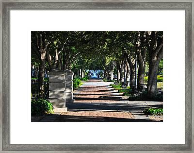 Waterfront Park Charleston Framed Print by Lori Kesten