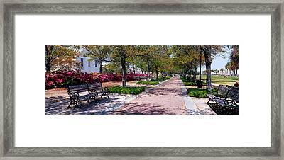 Waterfront Park Charleston Sc Usa Framed Print