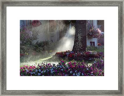 Watering The Lawn Framed Print by Keith Boone