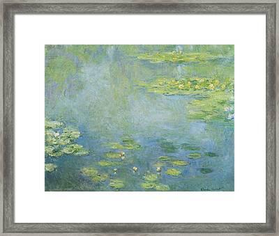 Waterlilies 1906 Framed Print
