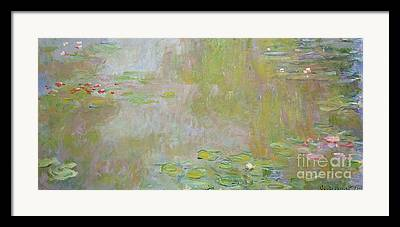 Waterlilies At Giverny Framed Prints