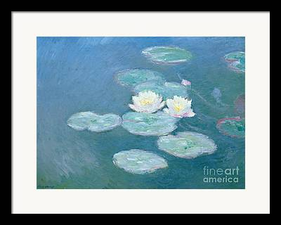 Lily Pads Framed Prints