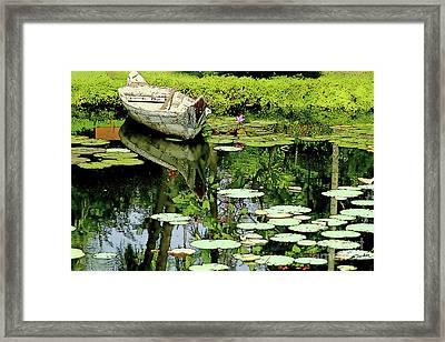 Waterlilies   Framed Print by Linda Parker
