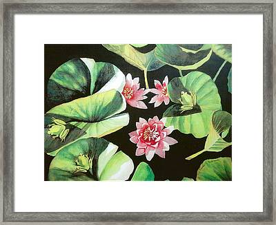Waterlilies With Frogs Framed Print