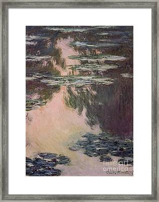 Waterlilies With Weeping Willows Framed Print