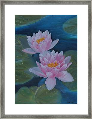 Waterlillies Framed Print by M S