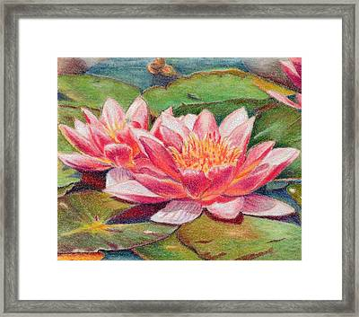 Waterlillies Framed Print by Robynne Hardison