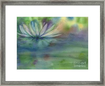 Waterlily Framed Print by Amy Kirkpatrick