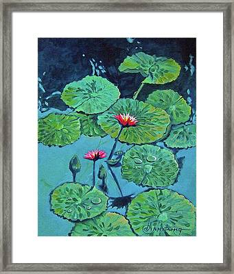 Waterlily Framed Print by Denise Armstrong