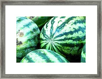 Watermelon Love Framed Print