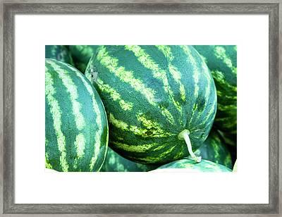 Watermelon Yum Framed Print by Teri Virbickis