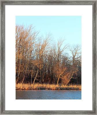 Waters Edge 2 Framed Print