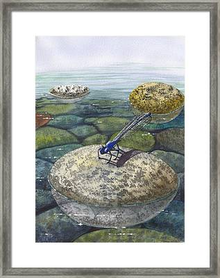Waters Edge Framed Print by Catherine G McElroy