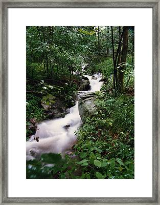 Watershed Gray Framed Print by Cynthia Ann Swan