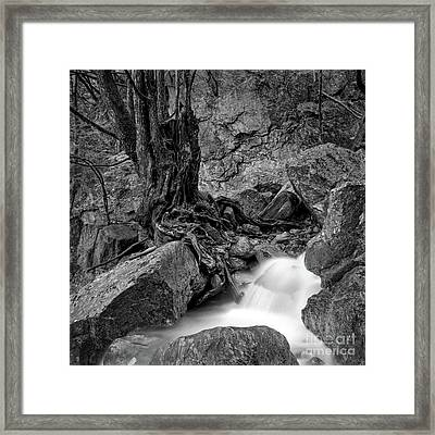 Waterside Framed Print