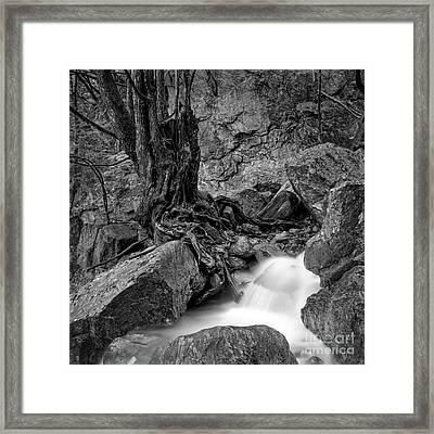 Framed Print featuring the photograph Waterside by Tatsuya Atarashi